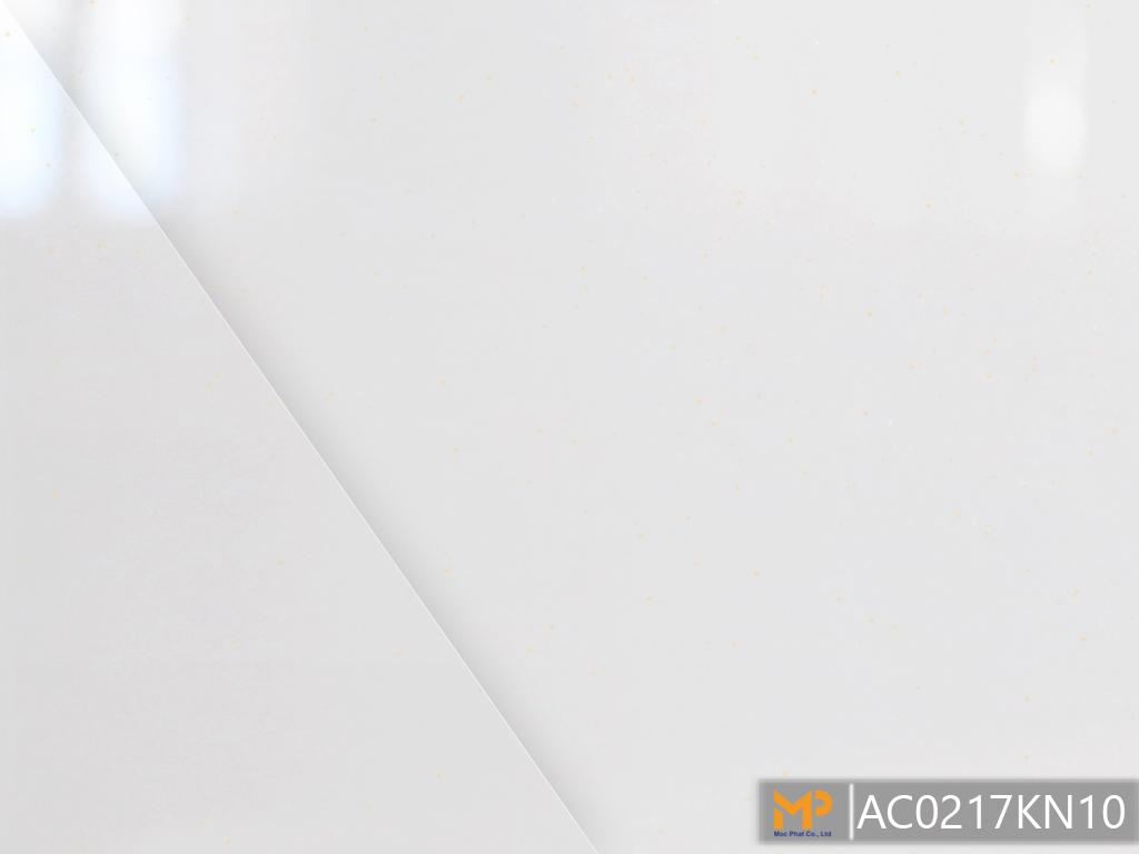 ACRYLIC AC0217KN10